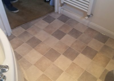 Master bathroom vinyl floor & sub-floor replacement